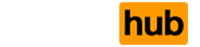 Porns Hub's Company logo
